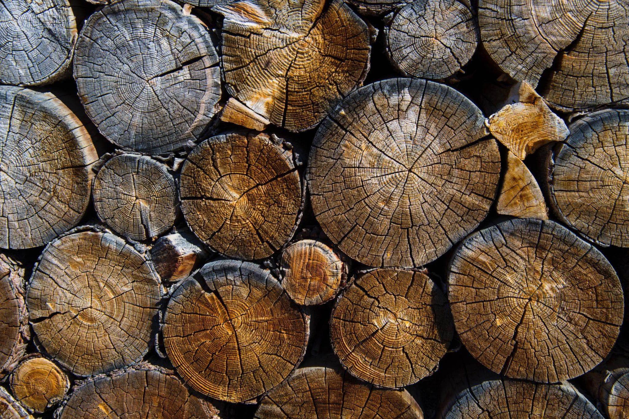madeirado - várias toras de madeira
