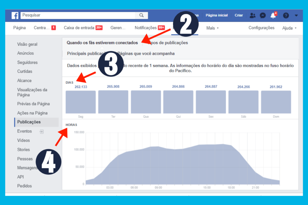 facebook insights exemplo 2