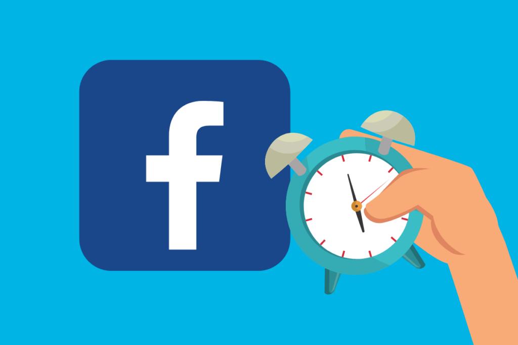 facebook insights hora