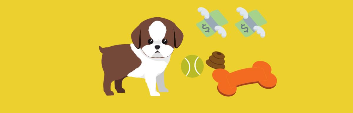 Ecommerce De Sucesso Fatura 1 Milhão com Produtos Pet Sustentáveis