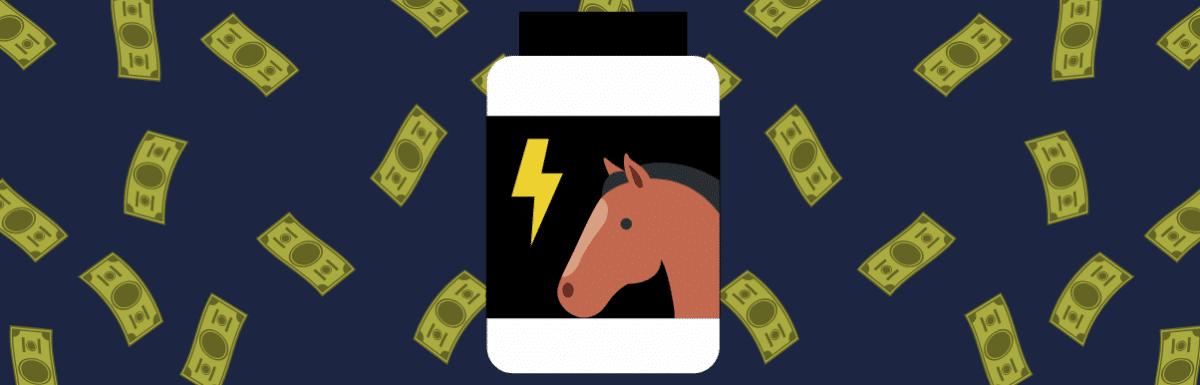 Ele faturou 180 mil vendendo suplemento para cavalo online