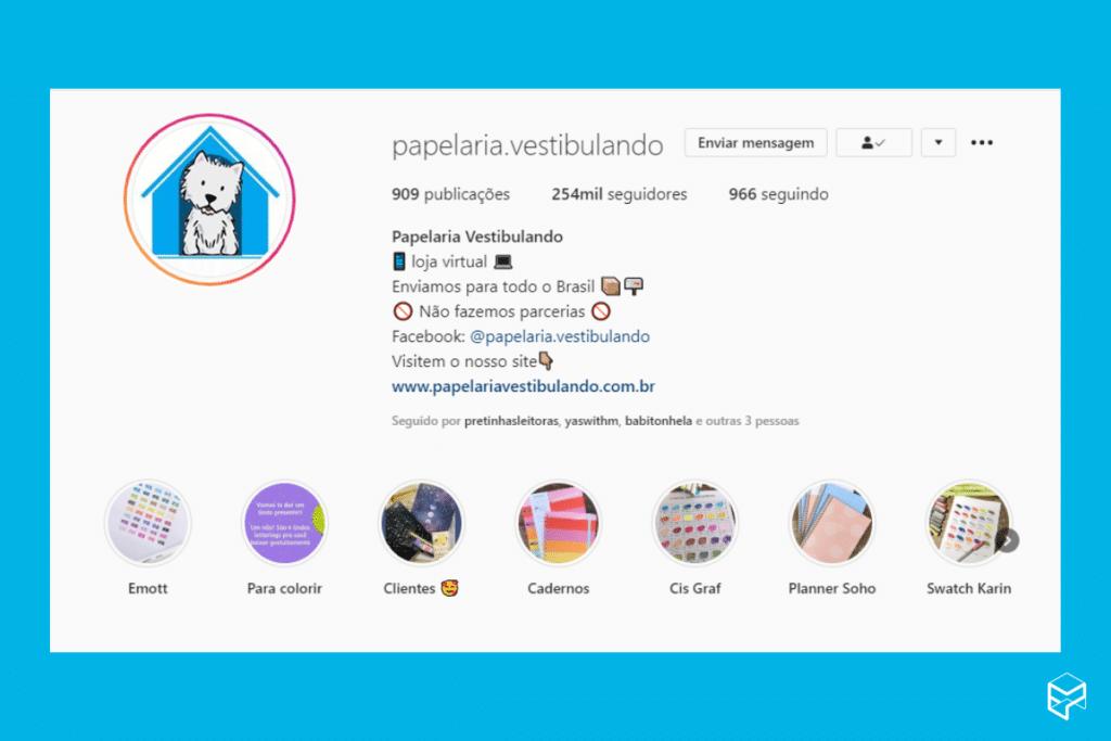 Ilustração do Instagram da Papelaria Vestibulando e como ela se apresenta para ser um Negócio Lucrativo