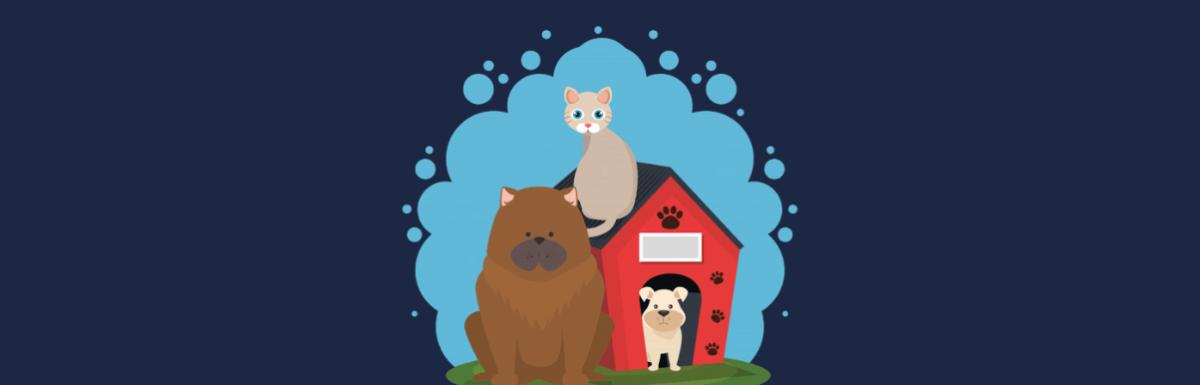 Como Montar um PetShop Online│Plano de Negócios